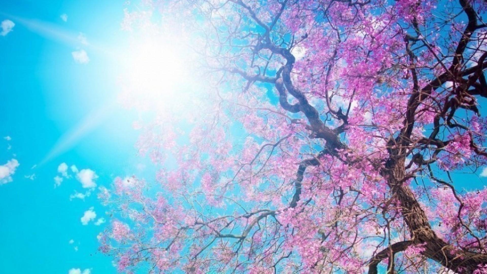 Пробуждаемся: слушаем 7 песен этой весны