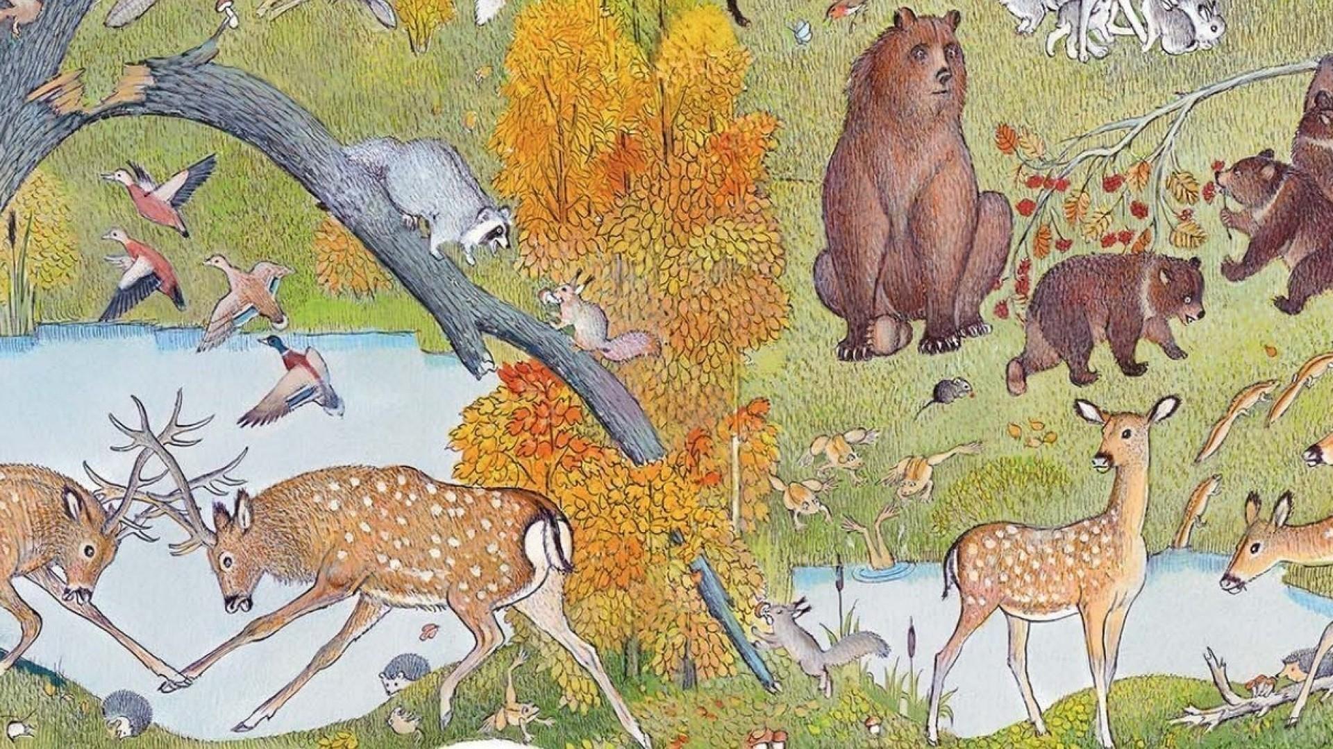 Пётр Багин: «Такую книгу я хотел бы иметь в детстве»