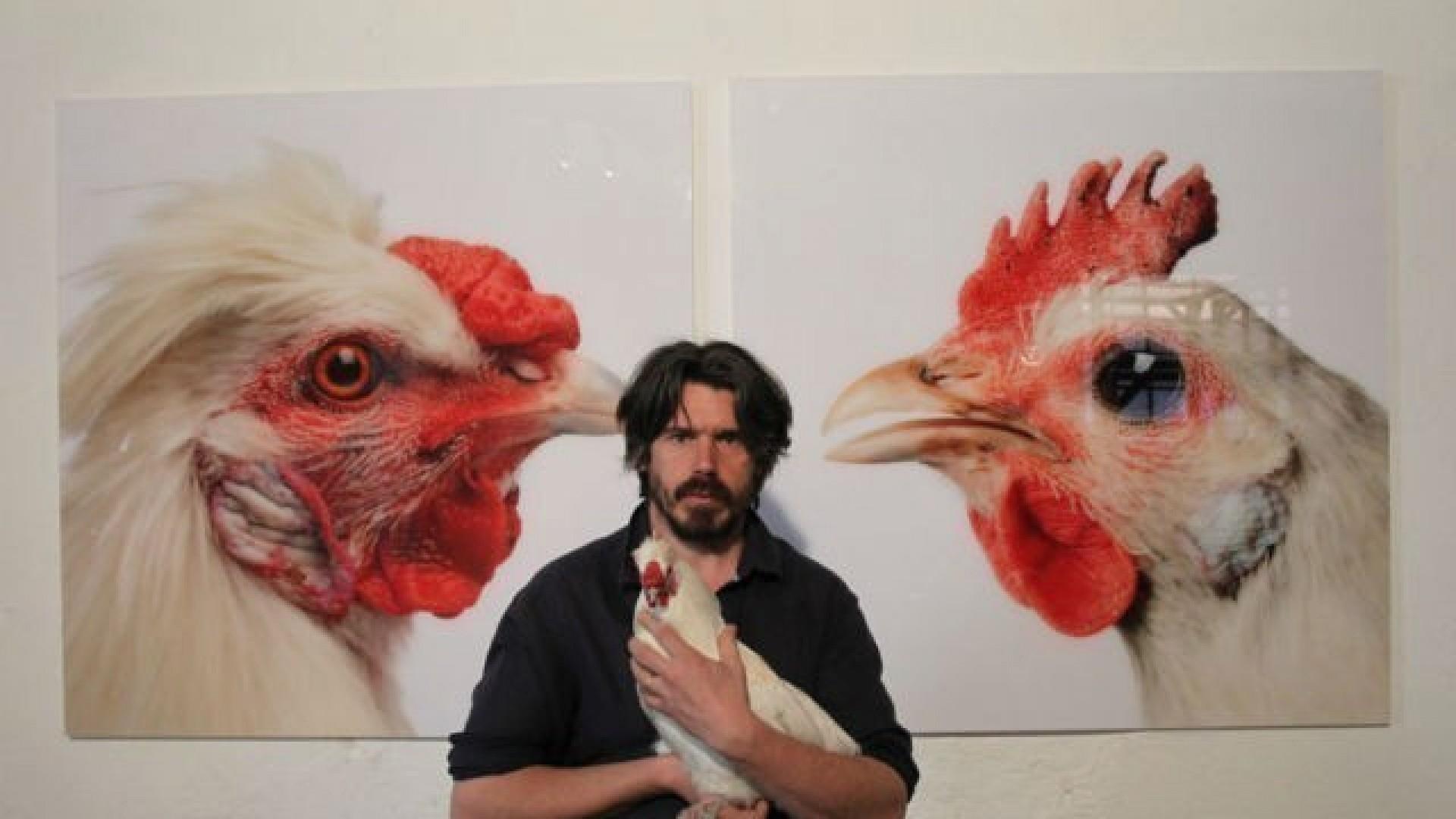 Бельгийский художник-генетик Кун ван Мехелен: «В Сибири живут стрессоустойчивые курицы»