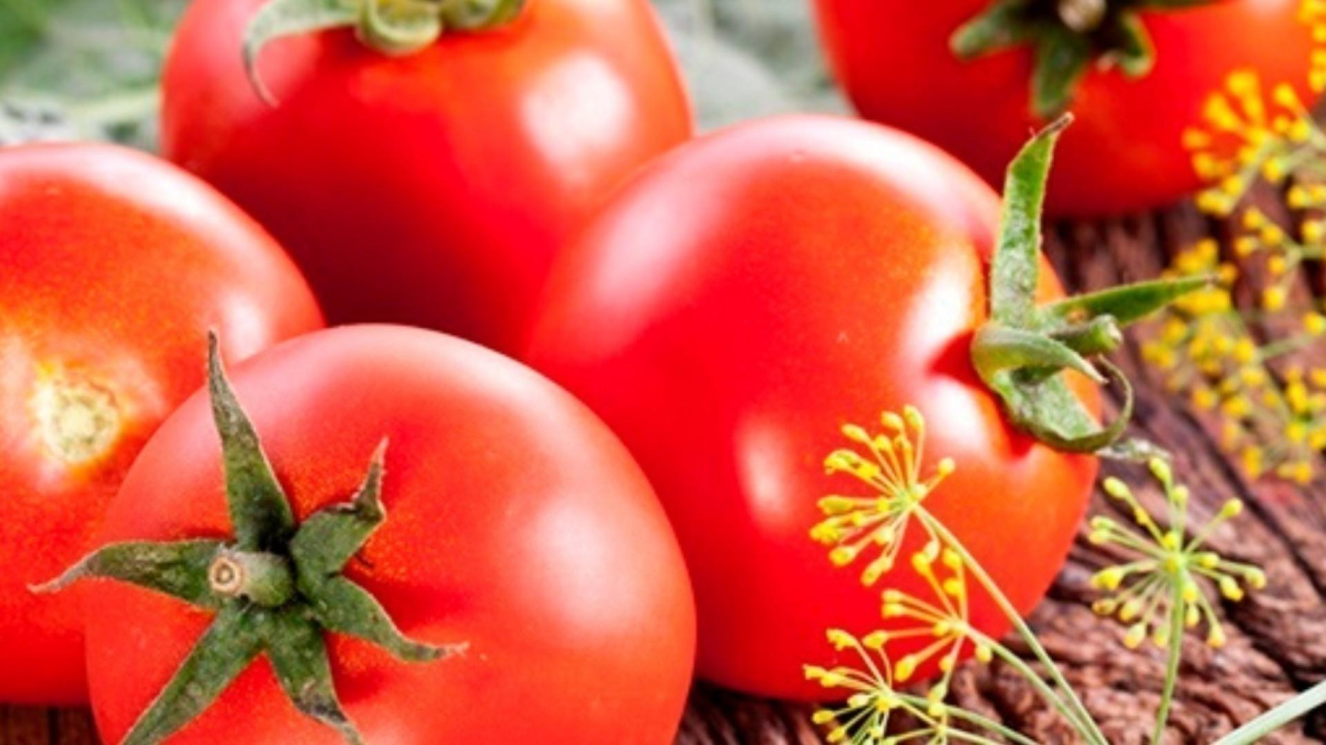 Малосольные помидоры: 3 вкусных и быстрых рецепта