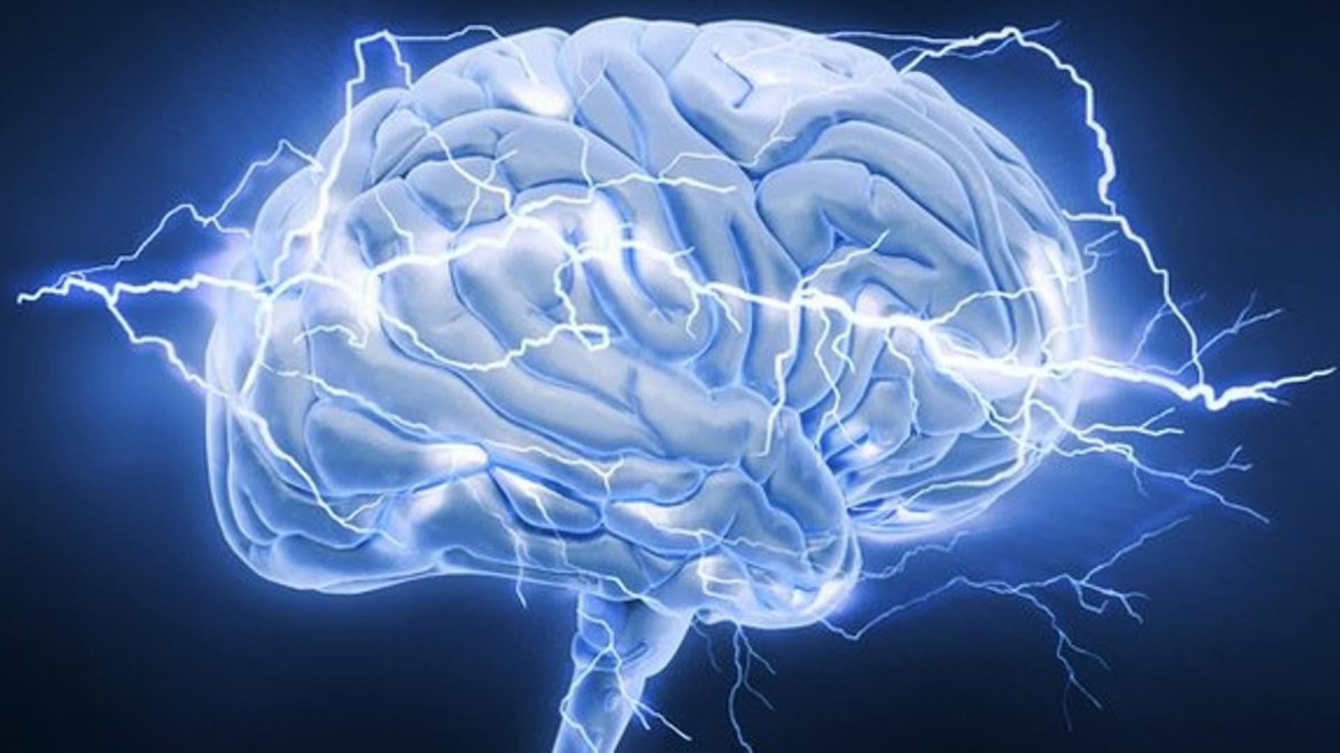 Нейробиология об обидчивости, отчужденности и их последствиях