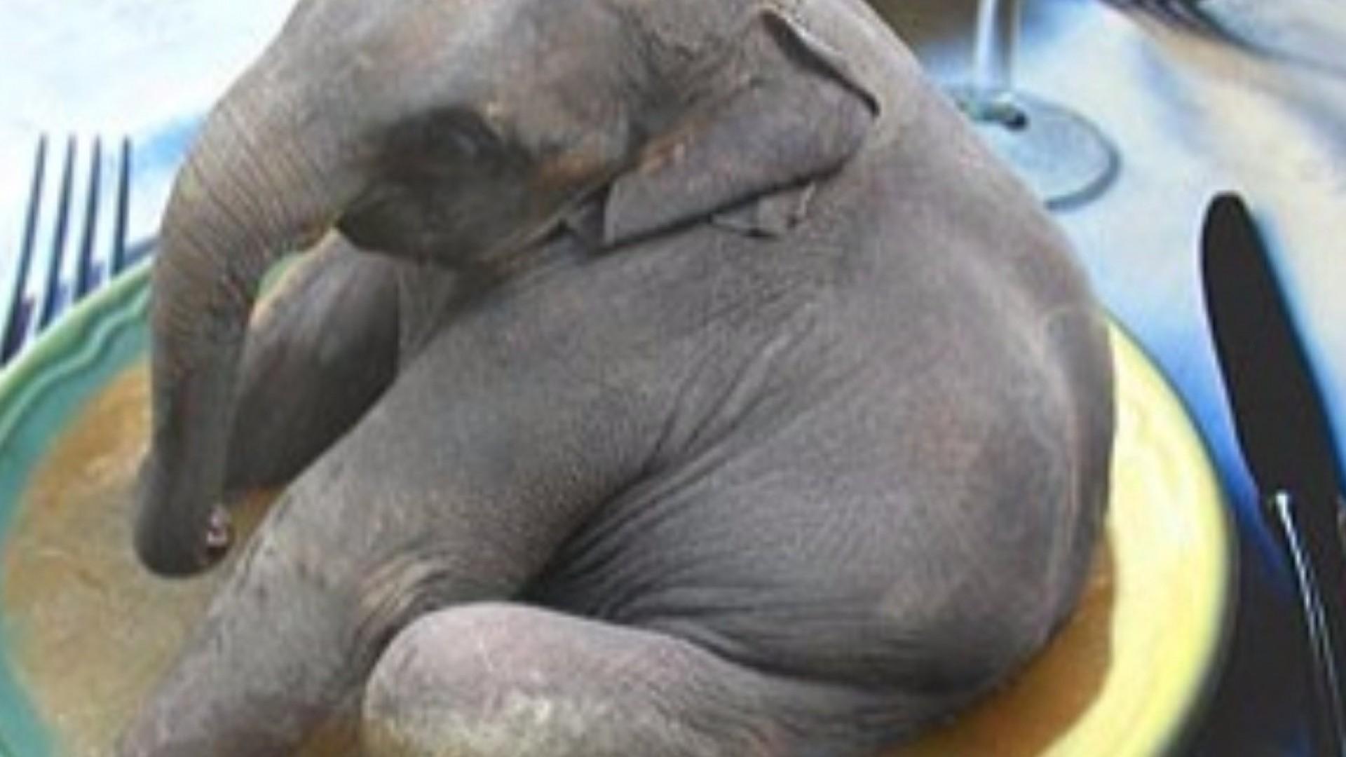 Как съесть слона: учимся решать важные дела