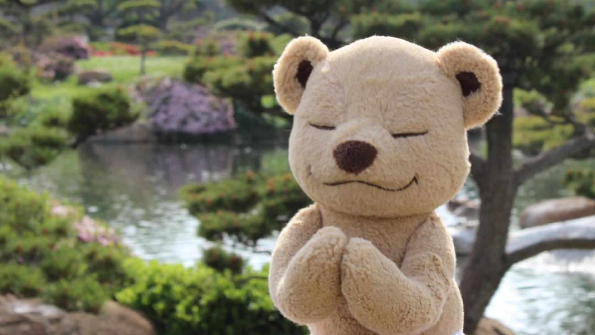 Осознанный медвежонок: йога для детей от МеддиТедди