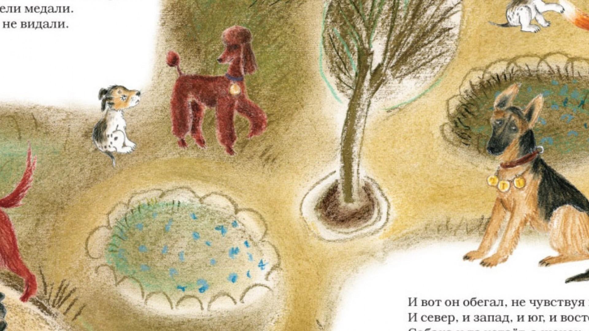 5 детских книг про кошек и собак