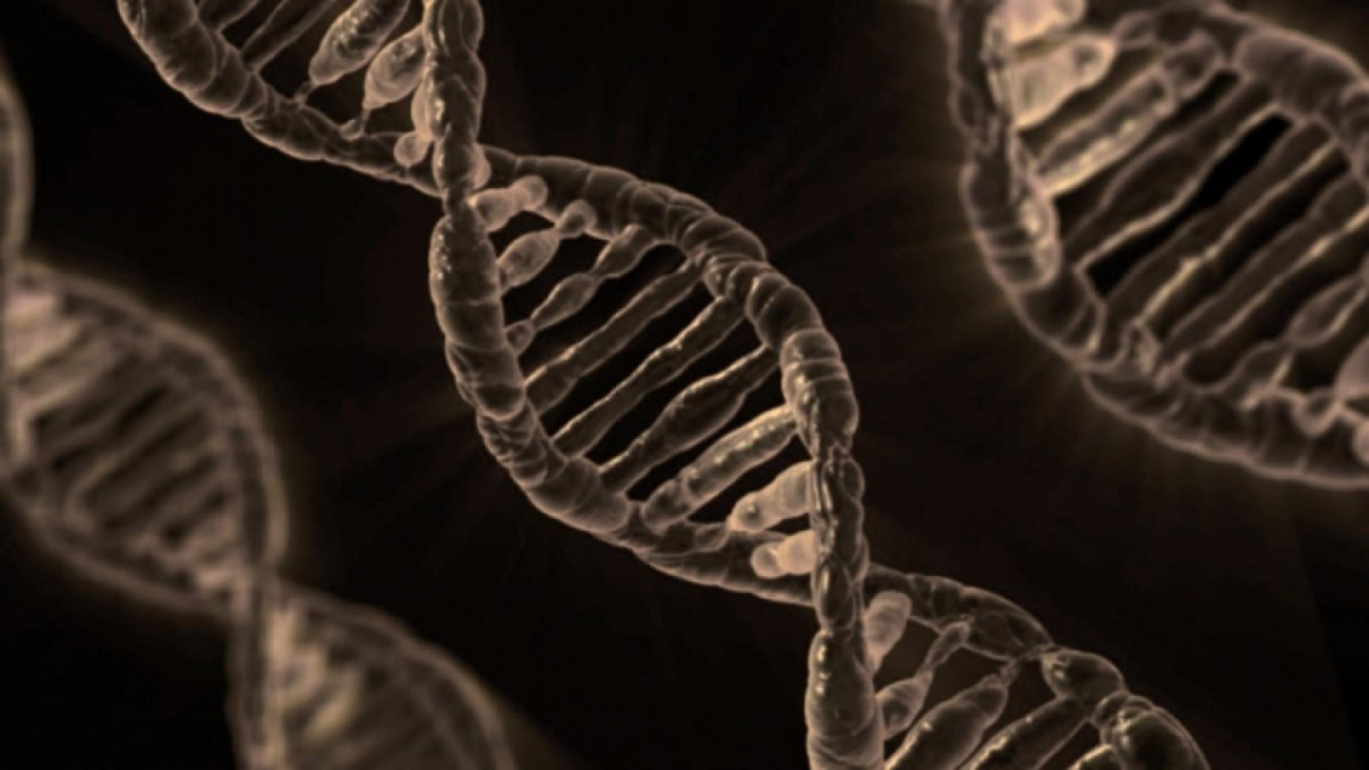 ДНК и карма